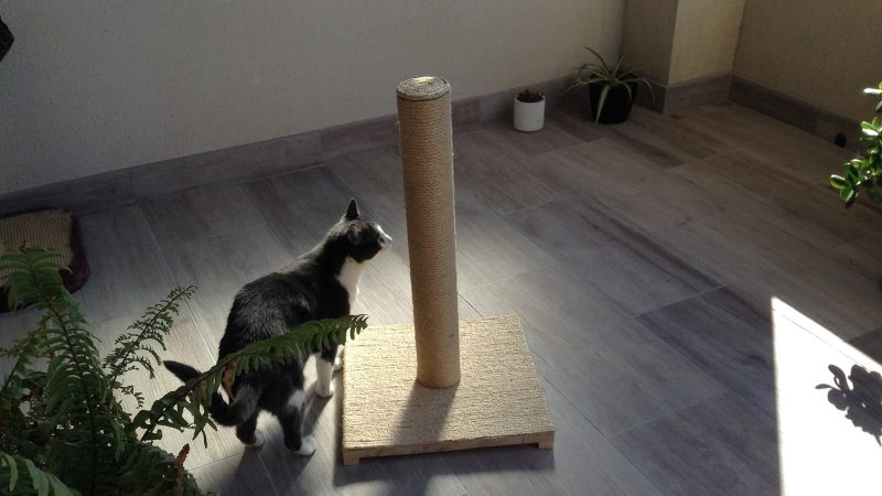DIY Création d'un poteau griffoir