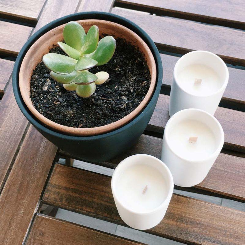 DIY Fabriquer une bougie naturelle anti-moustique à la citronnelle