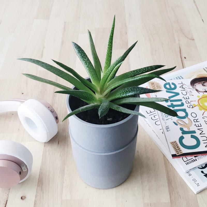 DIY Pot pour plante à réserve d'eau